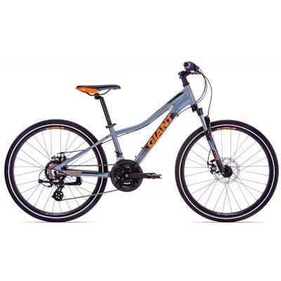 Велосипед Giant XTC Jr 1